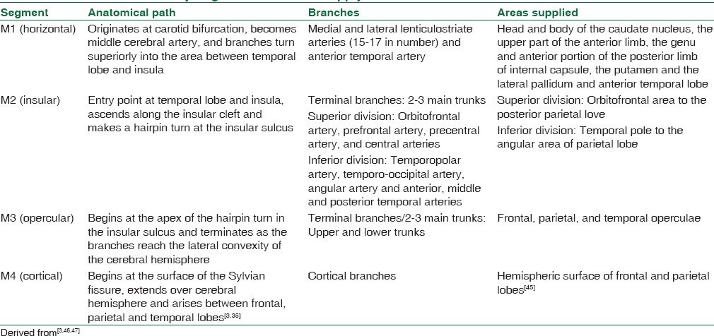 The cerebral circulation and cerebrovascular disease I